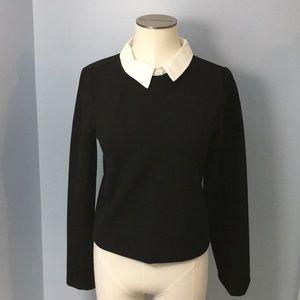 Black Zara Sweater with White Peter Pan Collar